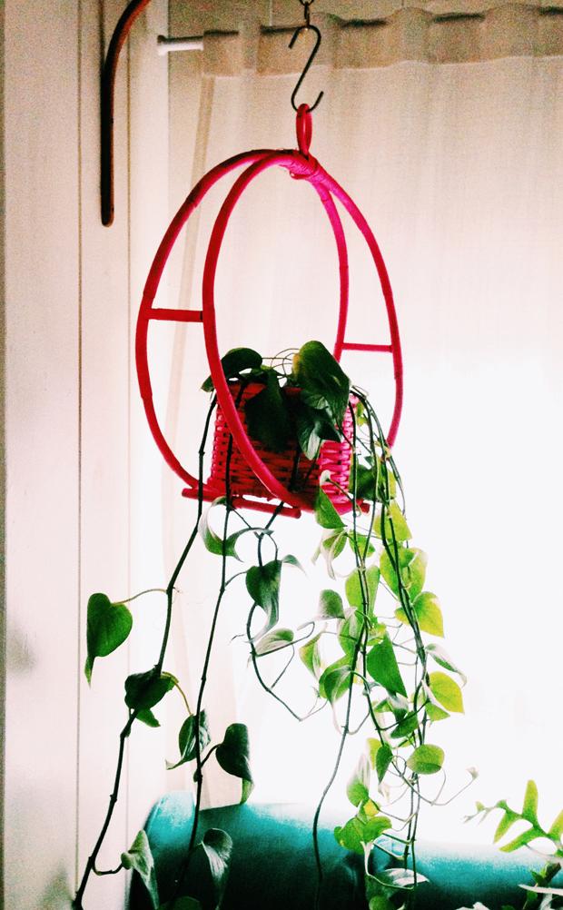 pink-plant-hanger