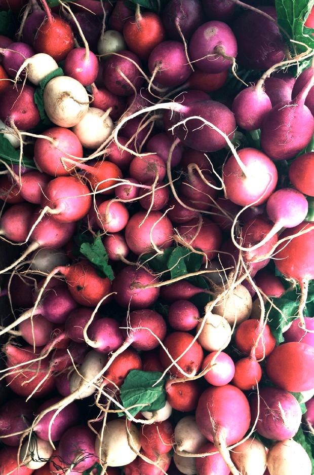 farmers-market-jblakeney3