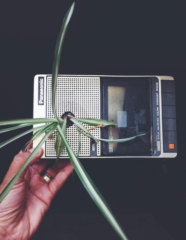 plants-in-e-waste3