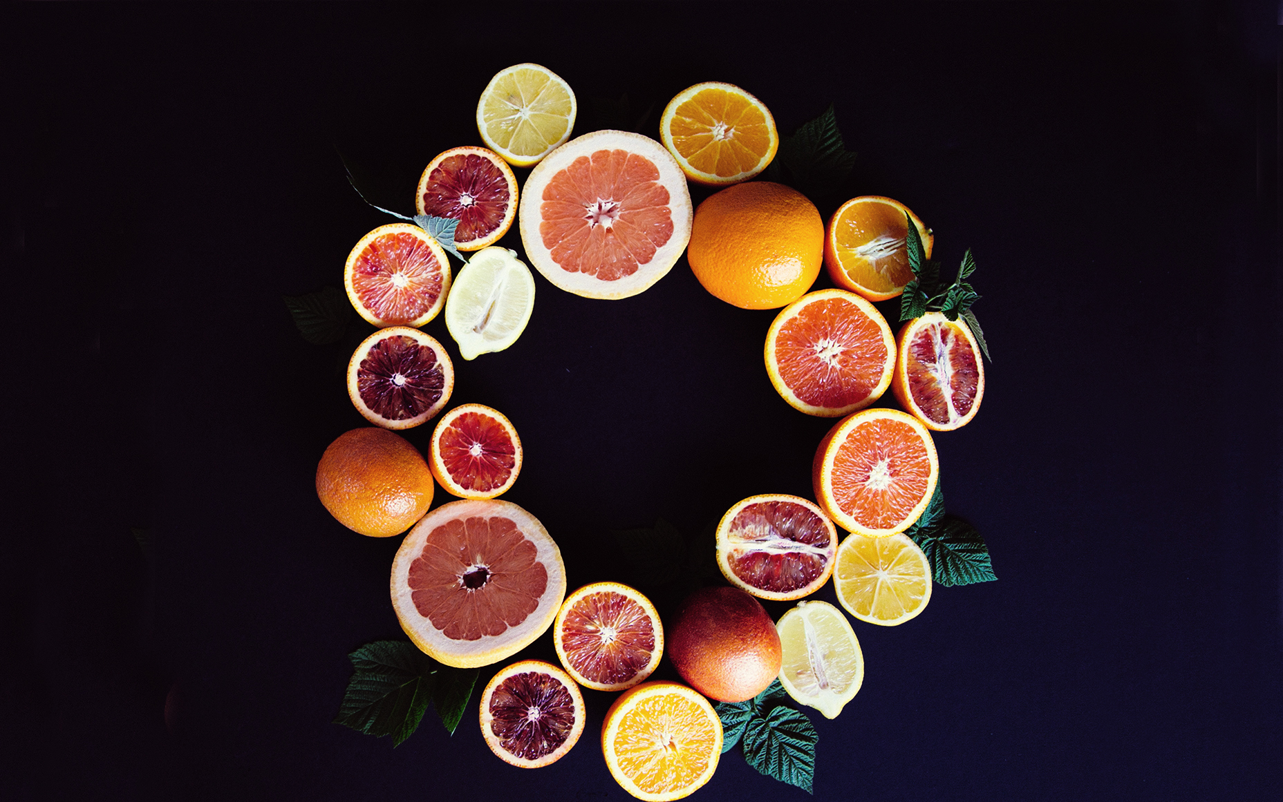 Citrus Wallpaper with Sunkist Growers   The Jungalow by Justina Blakeney