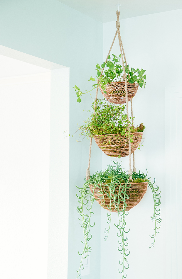 Tiered fruit basket turned kitchen garden | The Jungalow