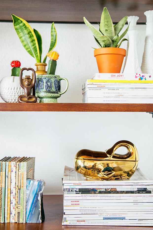 Plantopedia-Sansevieria-Styled-Bookshelves
