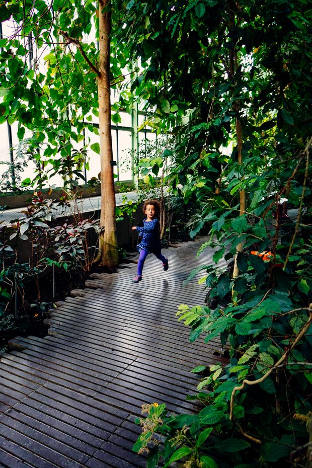 Jardin-des-plantes-10
