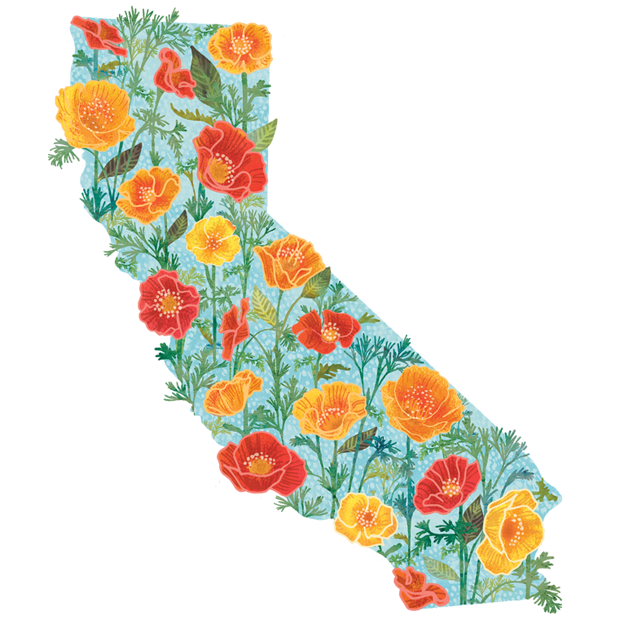 MID-CA-State-Flower