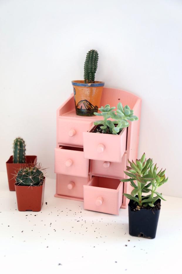 The Jungalow | Mini Cubby Garden