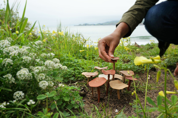 gopi-shah-ceramics-planting-mushrooms