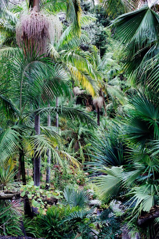 botanical-garden-justina-blakeney-1-3
