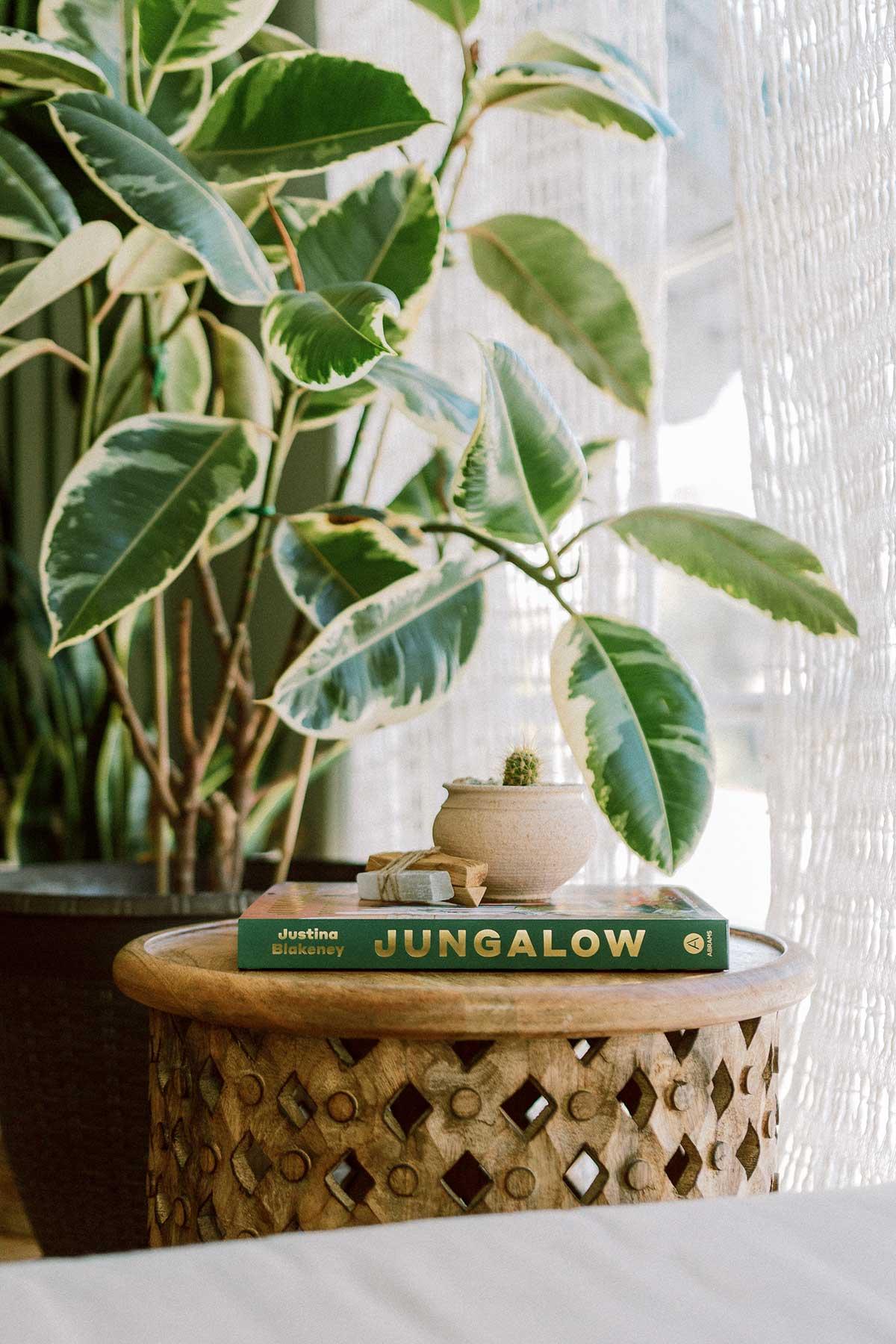 Jungalow Decorate Wild 5